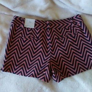 LOFT Shorts - Shorts - Ann Taylor Loft